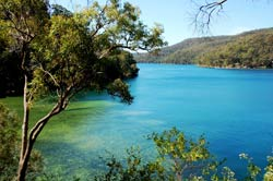 Ku-Ring-Gai National Park In Sydney